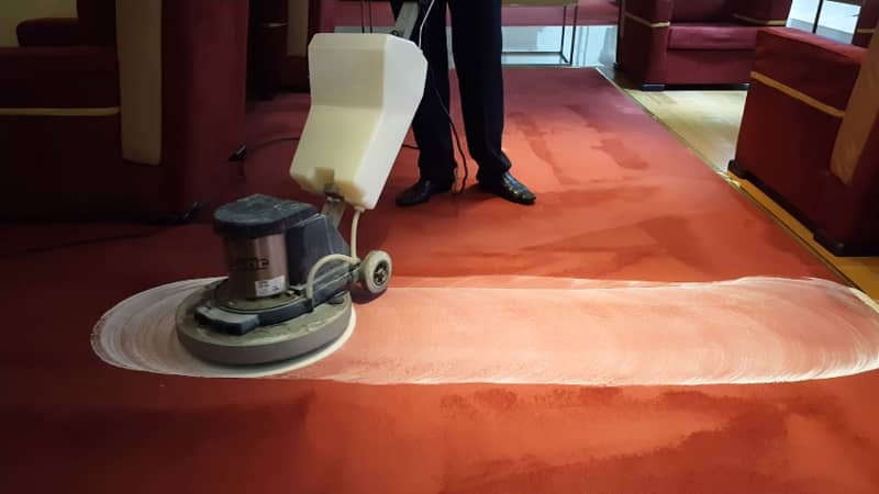Carpet Cleaning Dry Time After Shampooing
